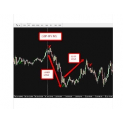Trend power system forex